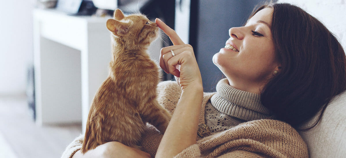 Smiling woman touching the nose of a kitten with her finger